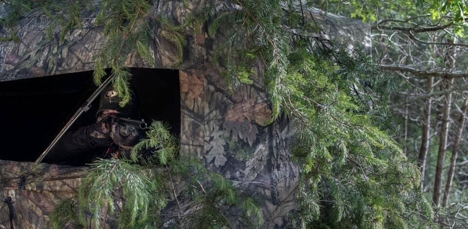 Mossy oak, brush in a ground blind